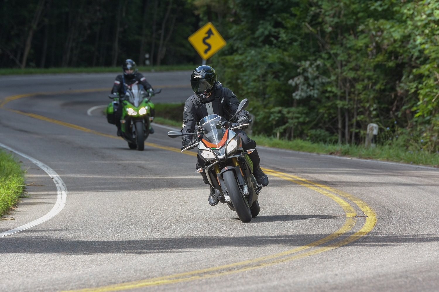 The Snake 2018 tennessee motorcycle ride.jpg