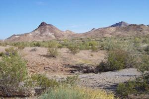 Quartzsite - Yuma Loop