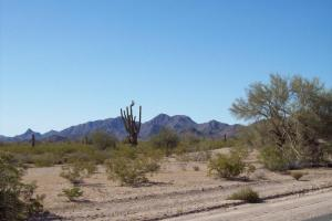 Wickenburg Road