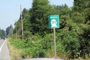 Hwy 203 - the Hidden Shortcut