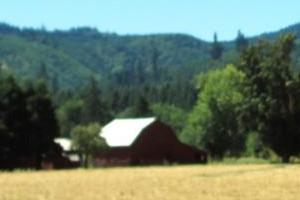 Vernonia - Astoria back roads; highway 47 & 202